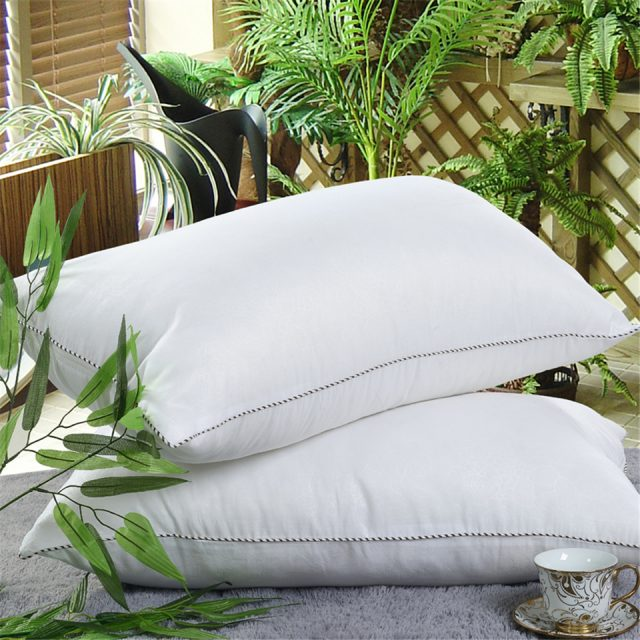 Minimalist Style Soft Down Pillow
