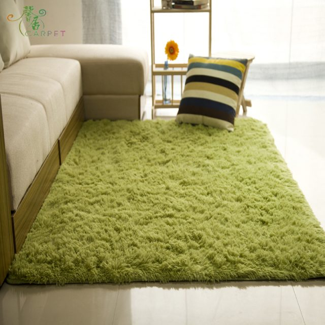 Soft Fluffy Carpet